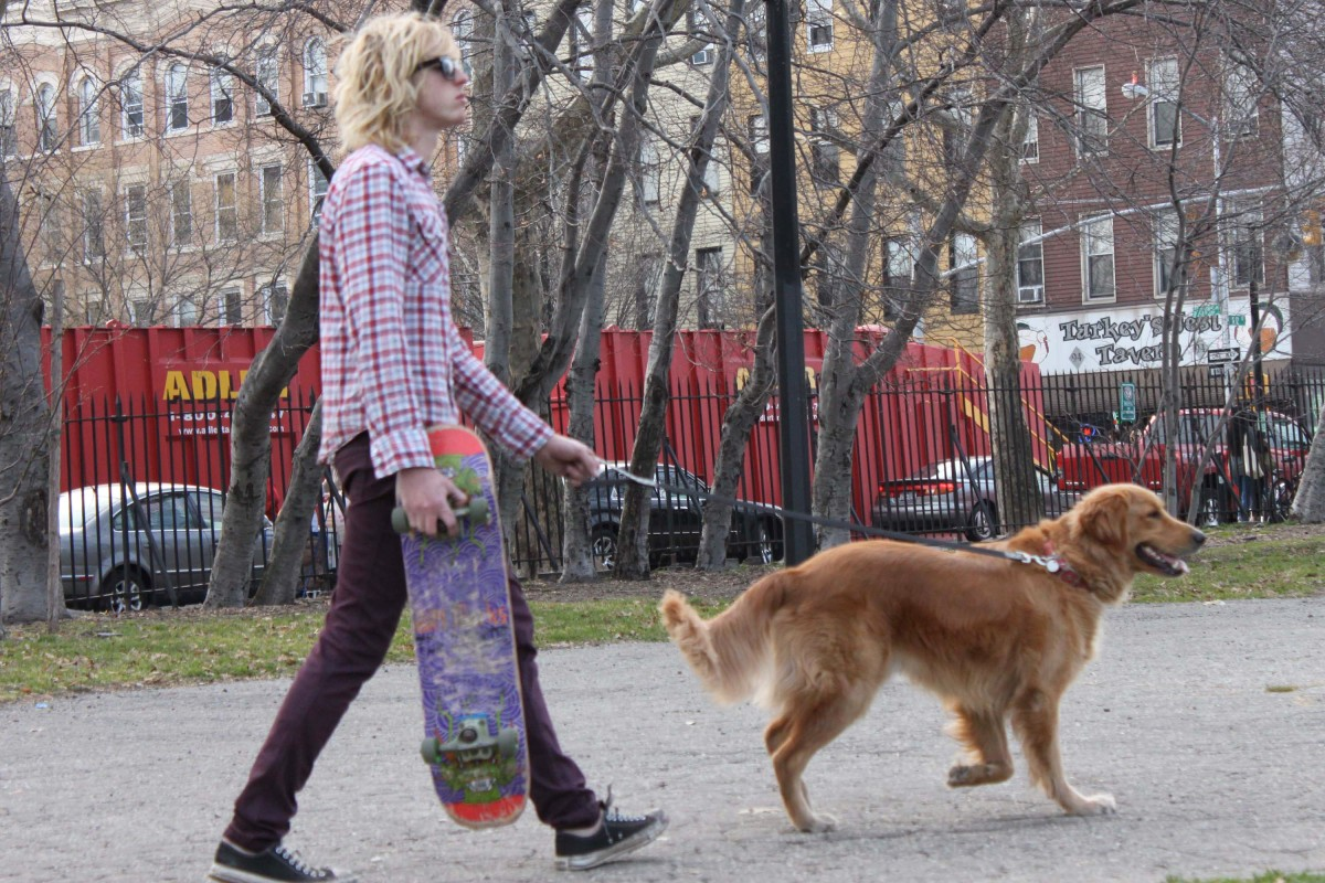 plaid, dog, skate board, i love you